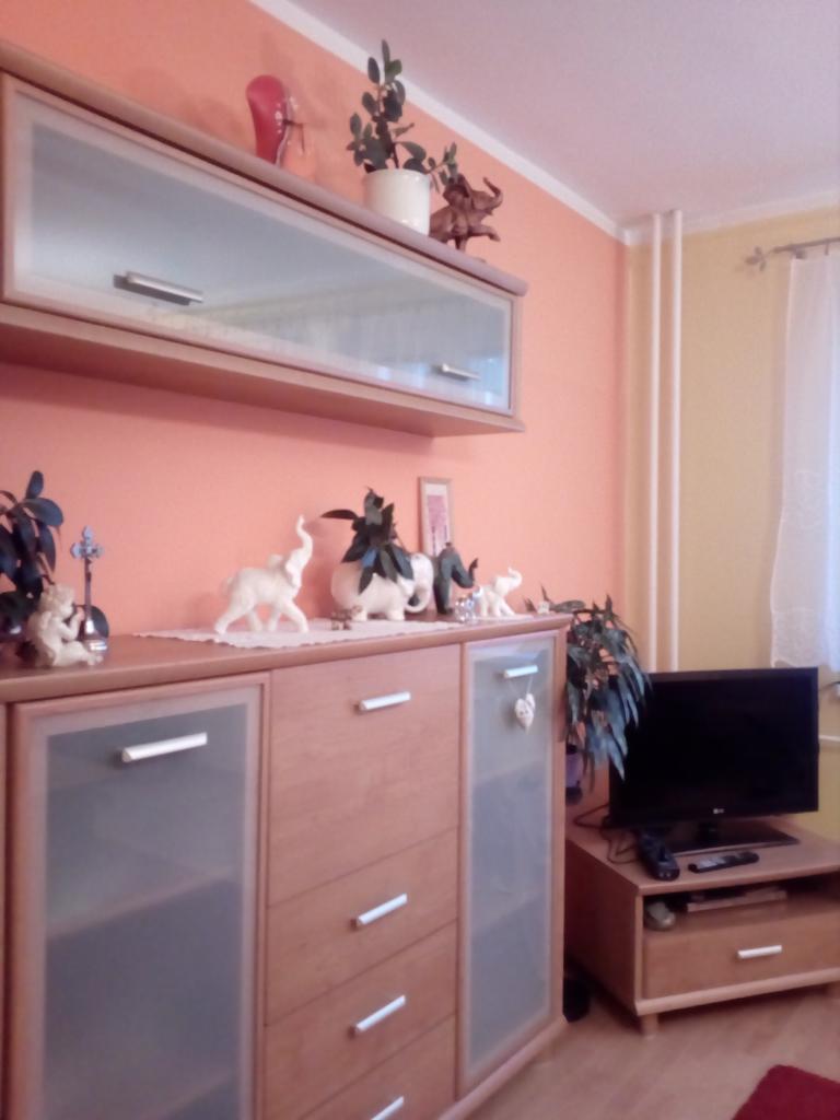Prenájom 2- izbového bytu Brezno, Mazorník