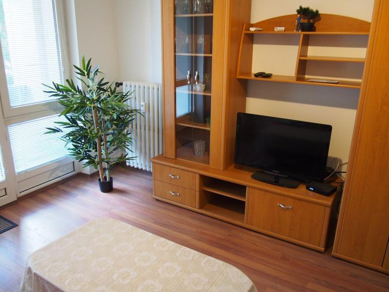 Prenajom 2-izbového byt na Páričkovej ulici s loggiou o celkovej výmere