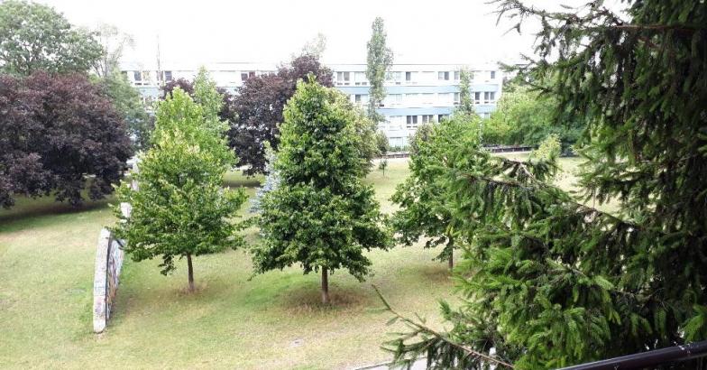Prenájom pre rodinu tichý 3-izbový byt na Rumančekovej ulici v Bratislave - Ružinove, časť Trávniky,